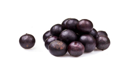 acai berry information