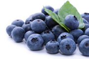 blueberries, antioxidants