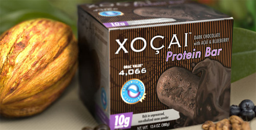 Xocai Protein Bar